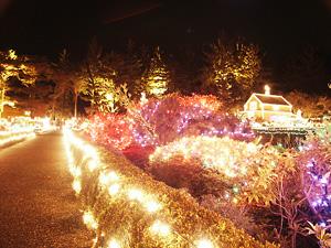 holiday lighting outdoor lighting reno gardnerville sparks nv